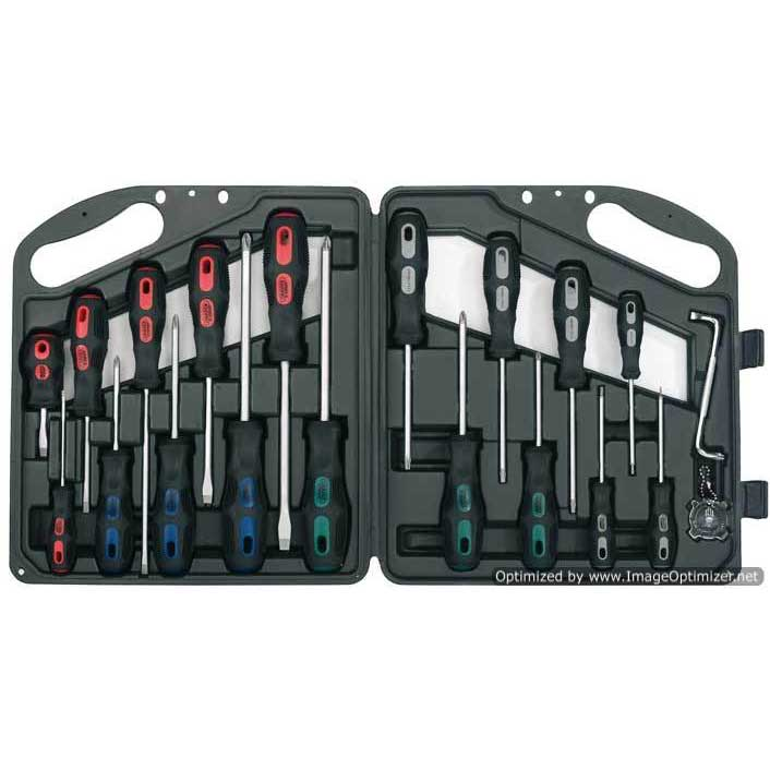 Draper Expert 20 Piece General Purpose Screwdriver Set