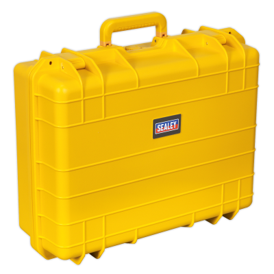 Storage Case Water Resistant Professional - Large