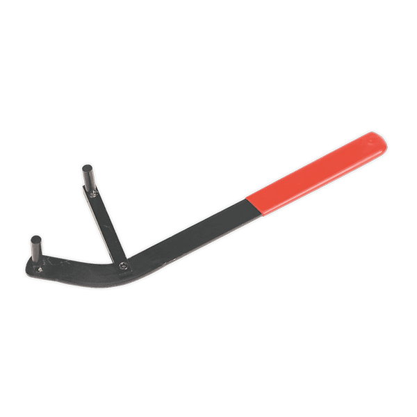 Sealey VS173 - Camshaft Positioning Tool